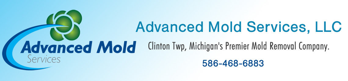 Clinton Twp, Michigan's Premier Mold Removal Company