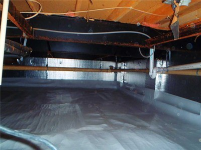 Crawlspace Mold Removal, Mold Prevention, and Encapsulation Experts!