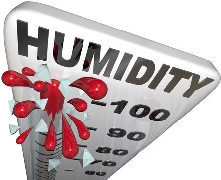 Humidity Levels In Your Crawlspace Affect The Rest Of Your Home