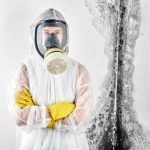 How To Select A Mold Removal Contractor?