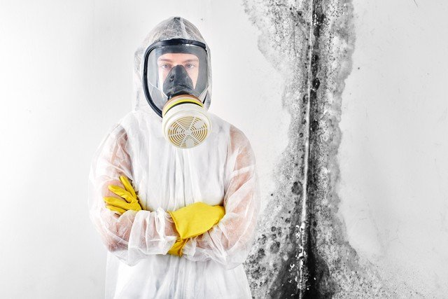 How To Select A Mold Removal Contractor?: How do you know the contractor you call is qualified and experienced? In this article, we explain how to select a mold removal contractor by revealing the top 10 clues that the mold removal contractor you called is inexperienced and not qualified. Clues #2, #7, and #10 are very important Learn more!