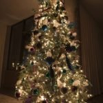 Can Christmas Trees Trigger Mold Allergies?