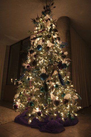 Christmas Trees Can Trigger Mold Allergies - Advanced Mold Services are mold removal experts serving the areas of Clinton Township and Macomb County, Michigan. Have you ever heard of Xmas tree syndrome? There is a reason that 1 in 3 people get sick soon after setting up their tree. This article explains why. Call 586-468-6883.