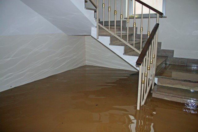 9 Tips To Prevent Mold After A Flood! - There is a direct link between water damage and mold growth. This article explains why. We also provide you with 9 recommendations to prevent a mold outbreak after your home or business floods. Got water damage restoration or mold growth questions? Call Advanced Mold Services, 586-468-6883.