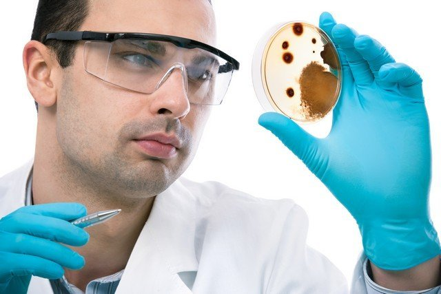 There Is No Valid Explanation Of How Mold Will Be Tested!