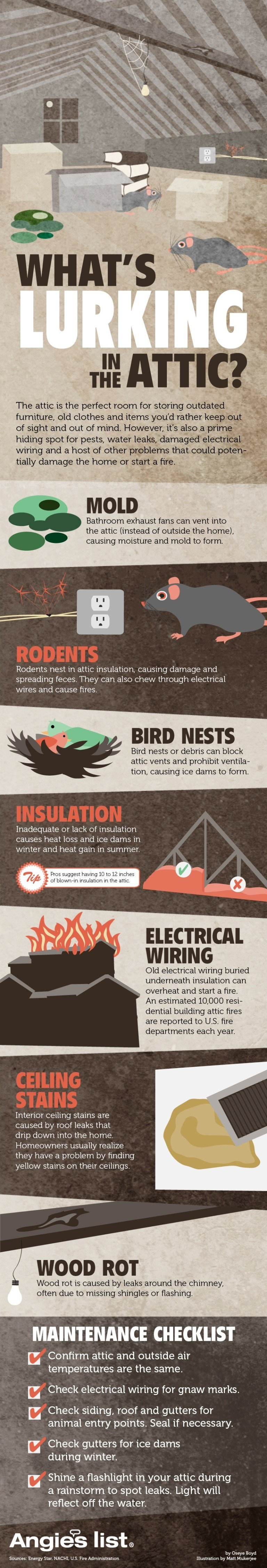What's Lurking In Your Attic Infographic