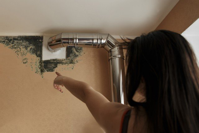 What Happens During Mold Removal? - If you find mold in your home or business in Clinton Township or Macomb County, Michigan, call Advanced Mold Services, 586-468-6883. We are mold removal professionals that follow an 8 step process to ensure that the indoor ecology of your property is restored to healthy levels.