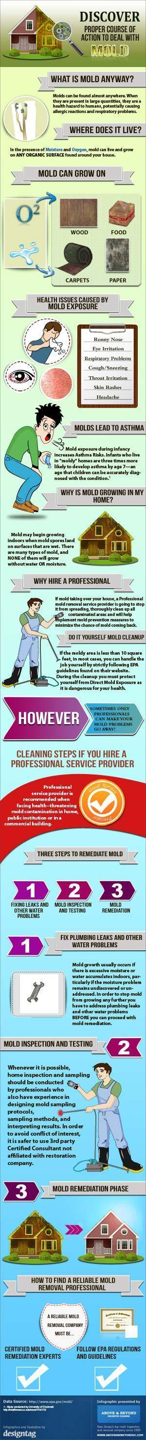 Mold Prevention Summary