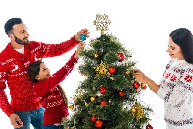 Steps To Minimize Mold Exposure From Your Xmas Tree